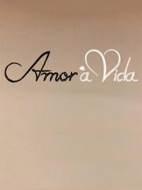 Novela Amor à Vida Todos Capítulos Completos Envio Digital